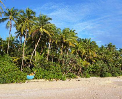 Badewetter: Batik Sarongs, die Alleskönner
